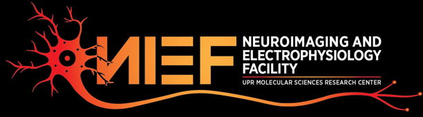 Logo Nief